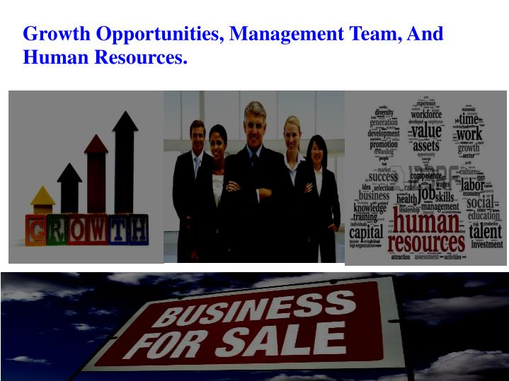 Growth Opportunities, Management Team, And Human Resources.