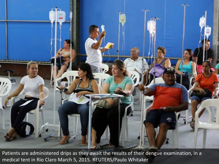 Patients are administered drips as they await the results of their dengue examination, in a medical tent in Rio Claro March 5, 2015. REUTERS/Paulo Whitaker