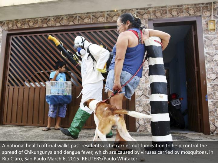 A national health official walks past residents as he carries out fumigation to help control the spread of Chikungunya and dengue fever, which are caused by viruses carried by mosquitoes, in Rio Claro, Sao Paulo March 6, 2015. REUTERS/Paulo Whitaker