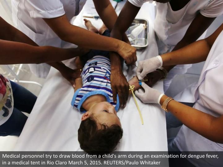 Medical personnel try to draw blood from a child's arm during an examination for dengue fever, in a medical tent in Rio Claro March 5, 2015. REUTERS/Paulo Whitaker