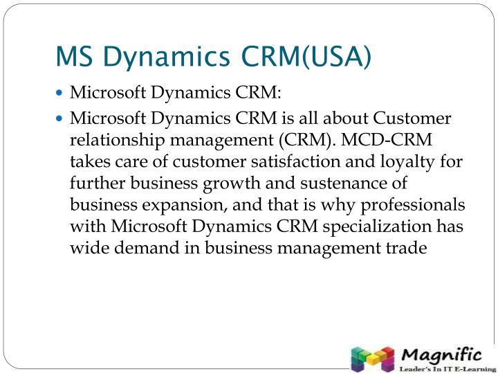 MS Dynamics CRM(USA)