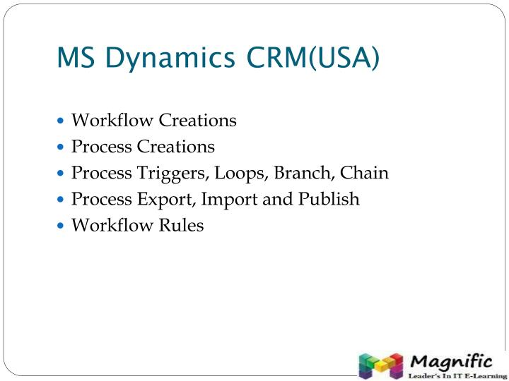 MS Dynamics CRM(USA)