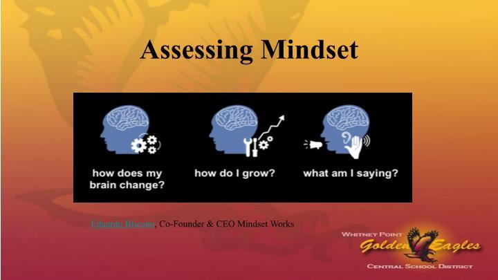 Assessing Mindset