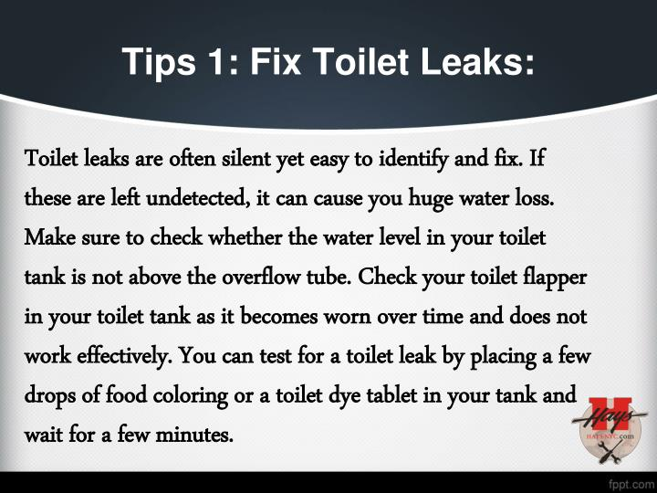 Tips 1 fix toilet leaks