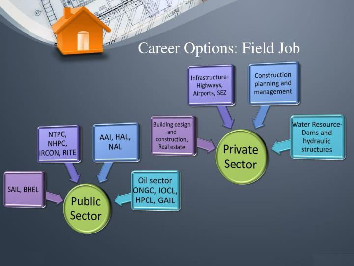 Career Options: Field Job