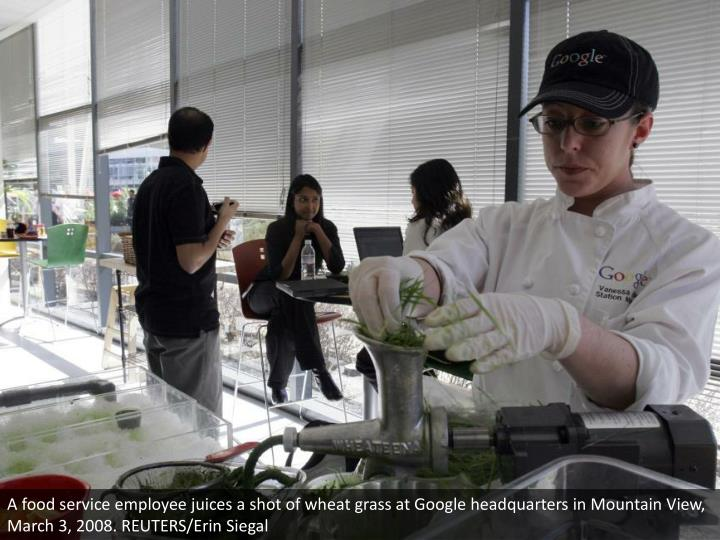 A food service employee juices a shot of wheat grass at Google headquarters in Mountain View, March 3, 2008. REUTERS/Erin Siegal