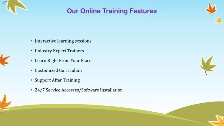 Our online training features