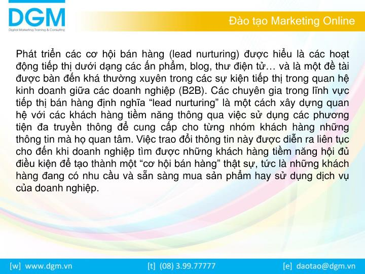 O t o marketing online