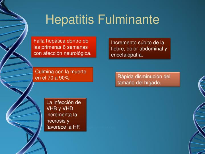 Hepatitis Fulminante