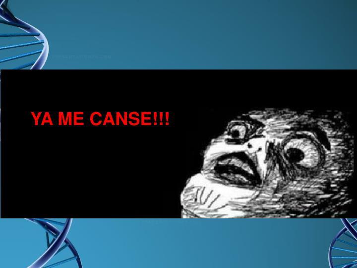 YA ME CANSE!!!