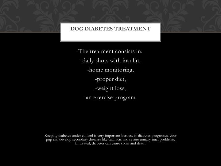 Dog diabetes treatment