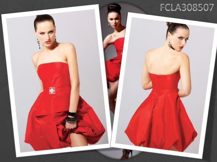 FCLA308507