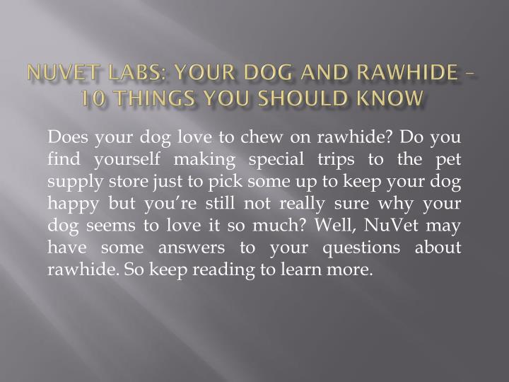 Nuvet labs your dog and rawhide 10 things you should know