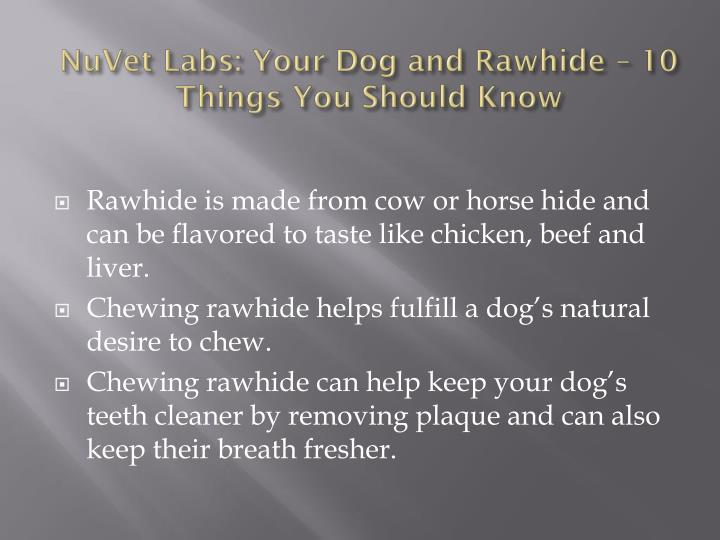 Nuvet labs your dog and rawhide 10 things you should know1