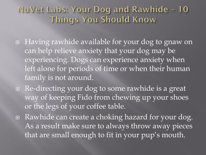 Nuvet labs your dog and rawhide 10 things you should know2