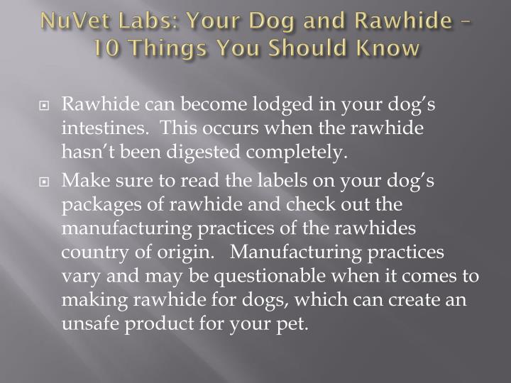 NuVet Labs: Your Dog and Rawhide – 10 Things You Should Know