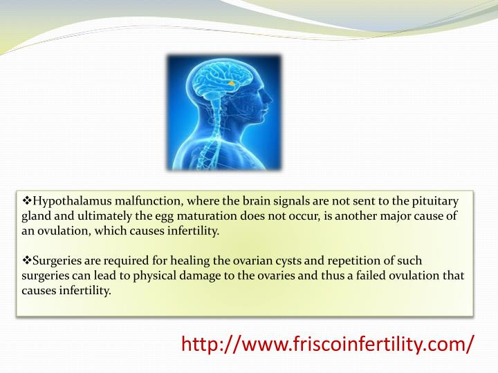 Hypothalamus malfunction, where the brain signals are not sent to the pituitary gland and ultimately the egg maturation does not occur, is another major cause of