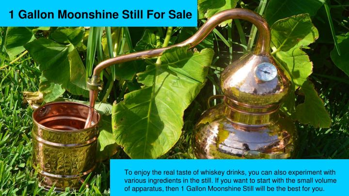 1 Gallon Moonshine Still For Sale