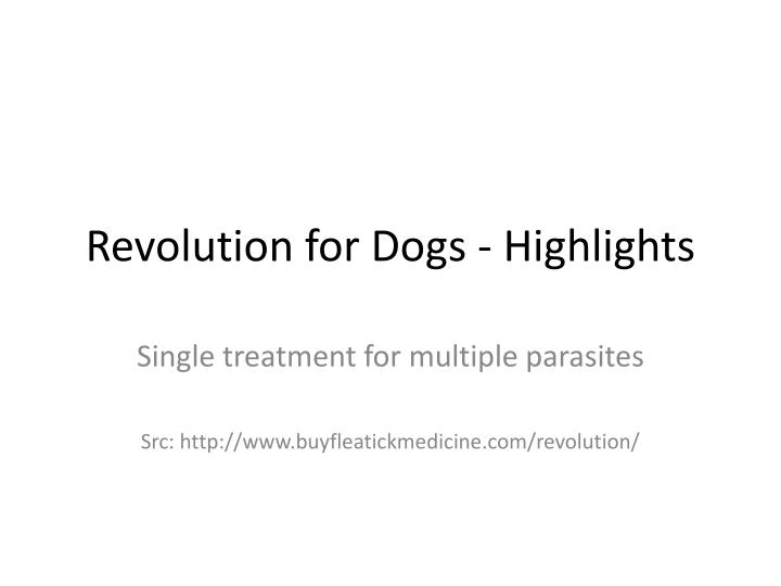 Revolution for dogs highlights