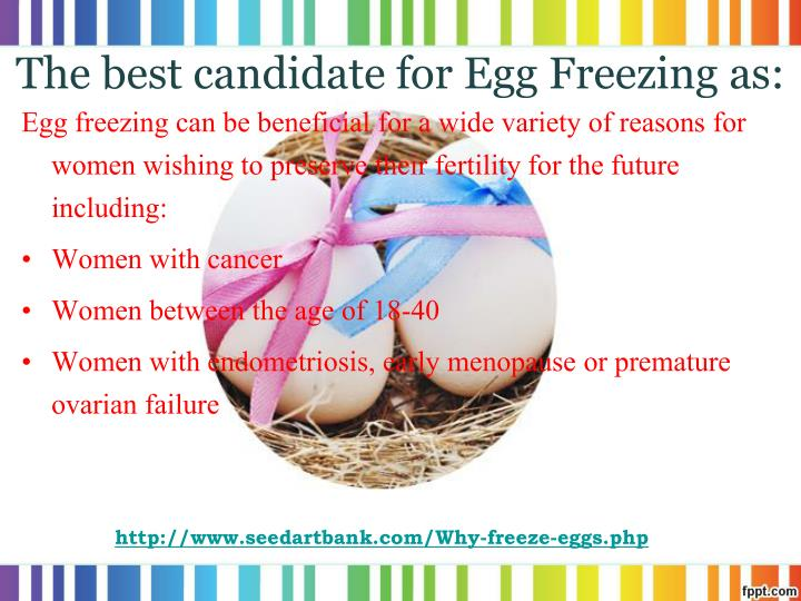 The best candidate for Egg