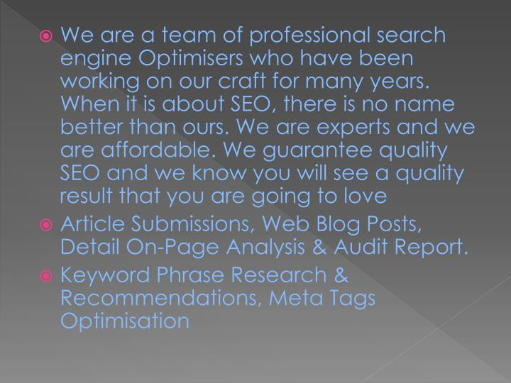 We are a team of professional search engine