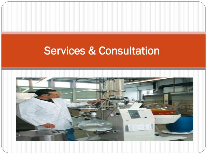 Services consultation
