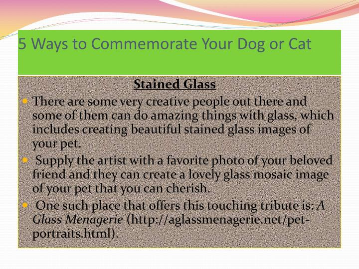 5 ways to commemorate your dog or cat1
