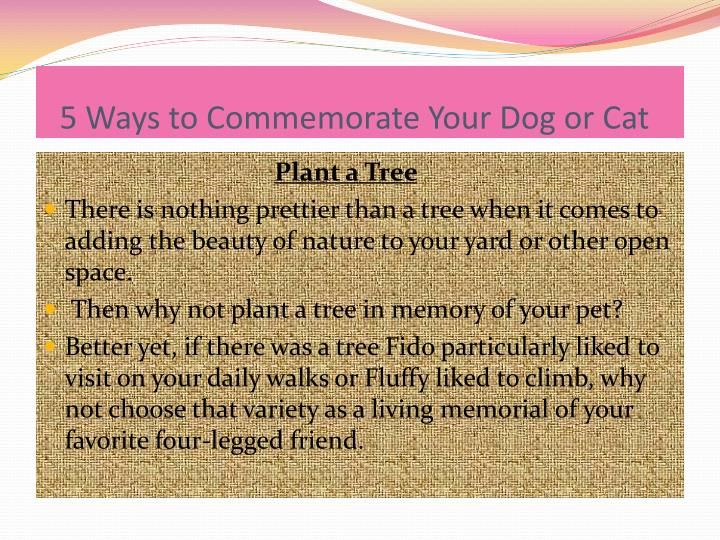 5 ways to commemorate your dog or cat2