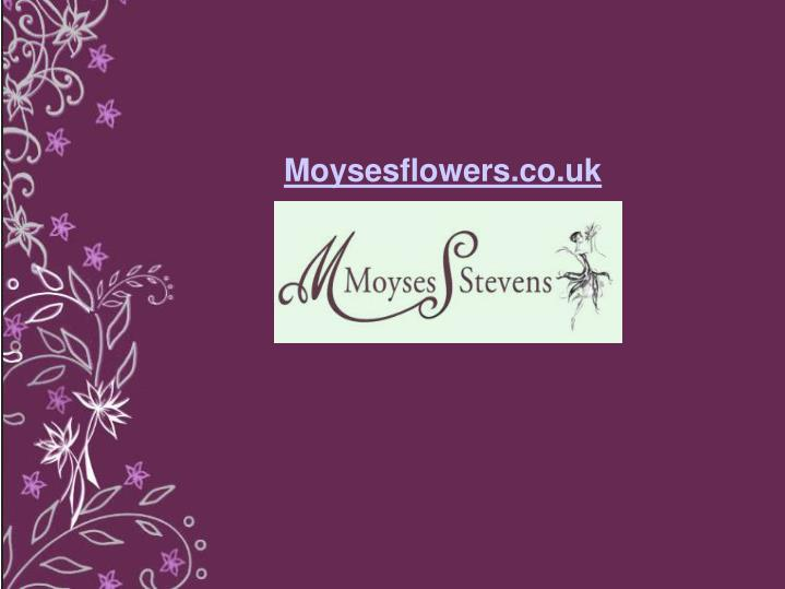 Moysesflowers.co.uk