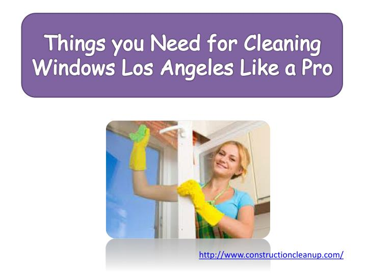 Things you need for cleaning windows los angeles like a pro