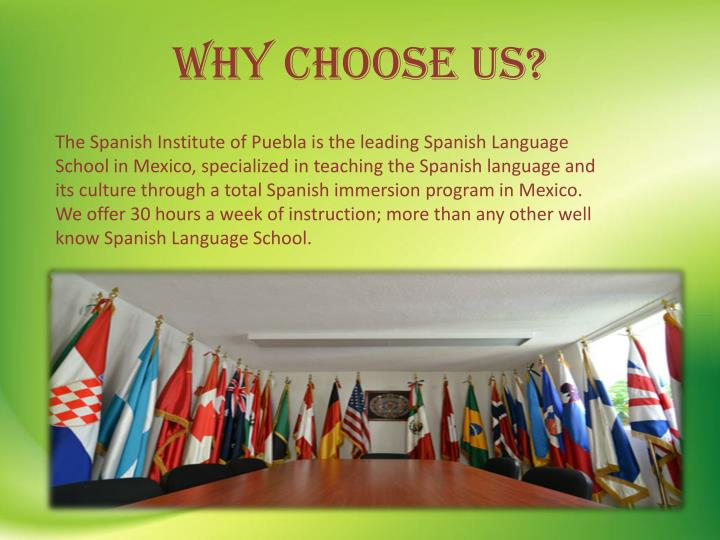 Programs immersion adult spanish