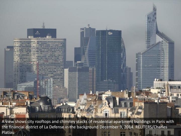 A view shows city rooftops and chimney stacks of residential apartment buildings in Paris with the financial district of La Defense in the background December 9, 2014. REUTERS/Charles Platiau
