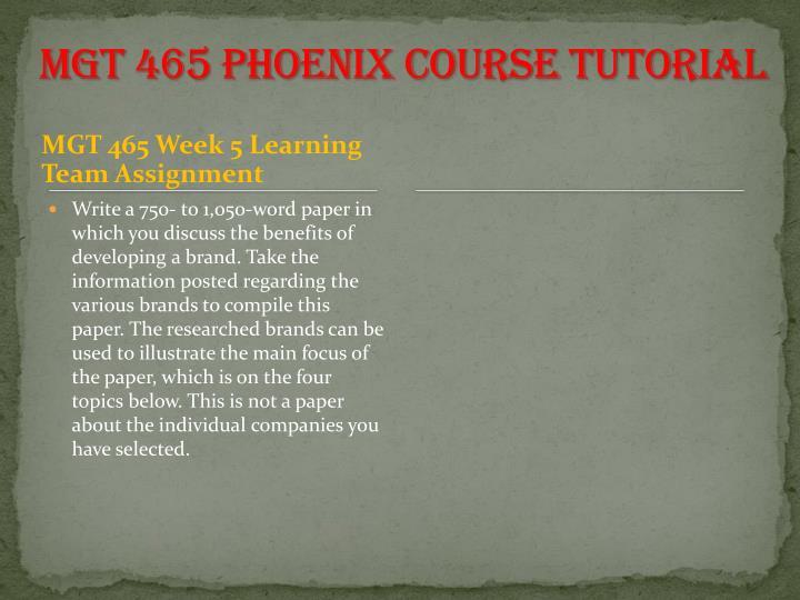 MGT 465 Phoenix