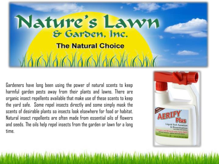 Gardeners have long been using the power of natural scents to keep harmful garden pests away from th...