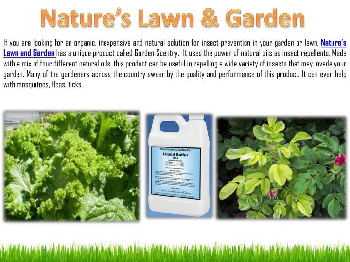 Nature's Lawn & Garden