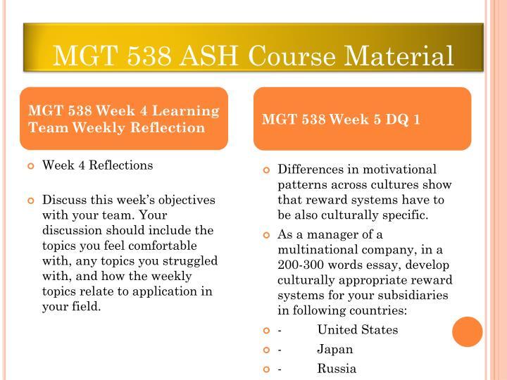 MGT 538 ASH