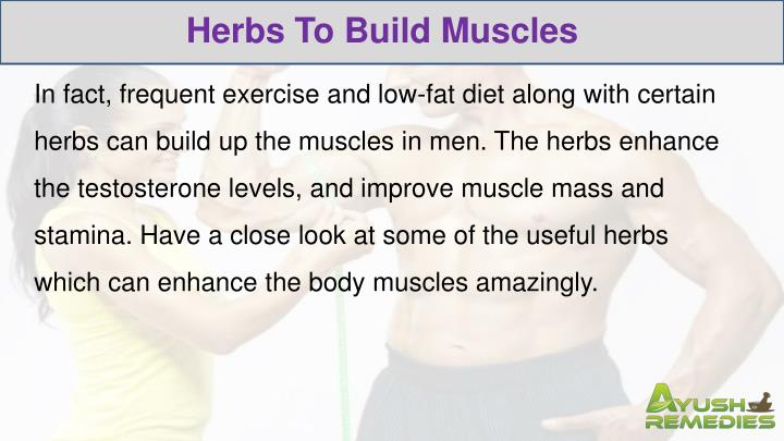 Herbs To Build Muscles