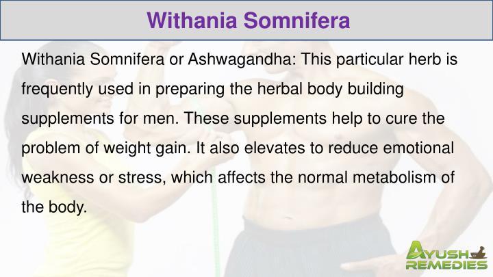 Withania Somnifera
