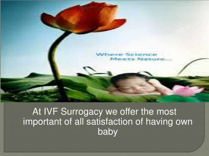 At IVF Surrogacy we offer the most important of all satisfaction of having own baby