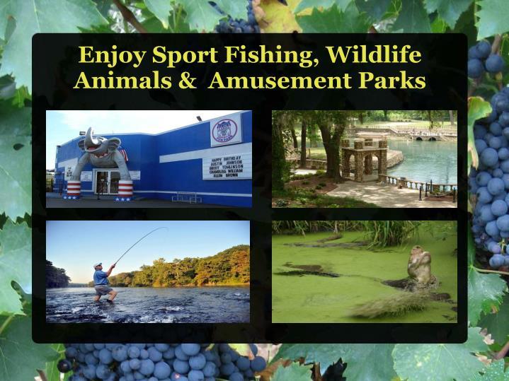 Enjoy Sport Fishing, Wildlife Animals &  Amusement Parks
