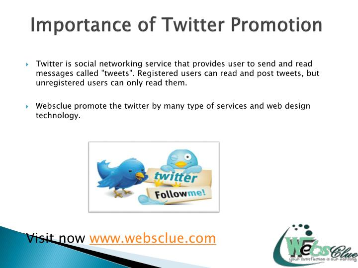 Importance of Twitter Promotion
