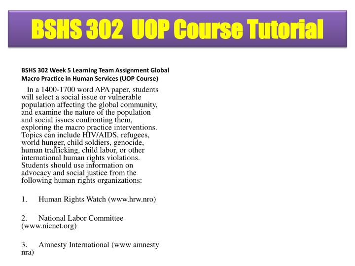 BSHS 302 Week 5 Learning Team Assignment Global Macro Practice in Human Services (UOP Course)