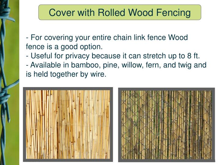 - For covering your entire chain link fence Wood fence is a good option.