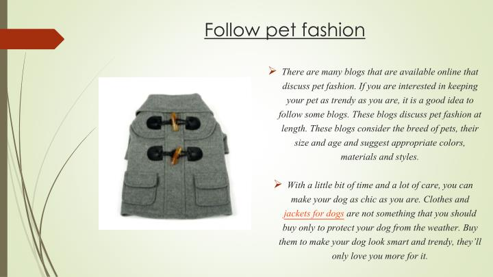 Follow pet fashion