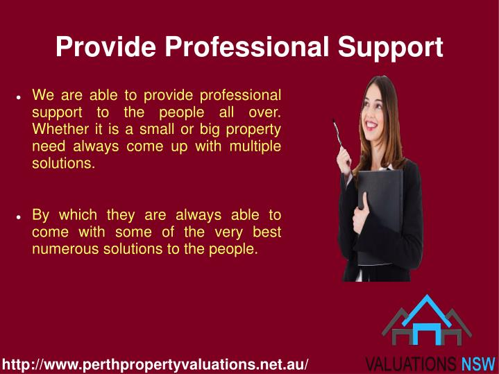 Provide professional support