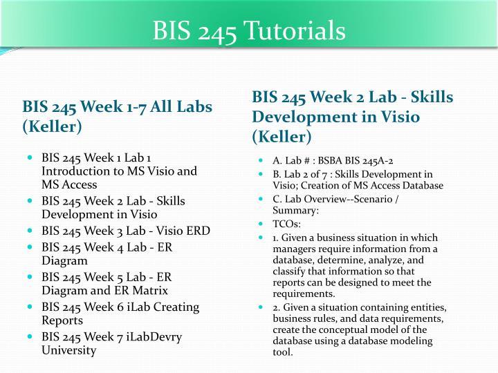 BIS 245