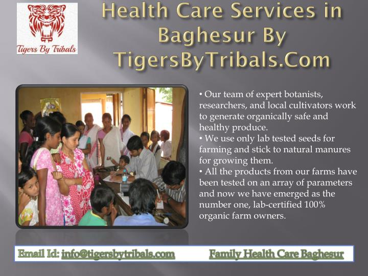 Health Care Services in