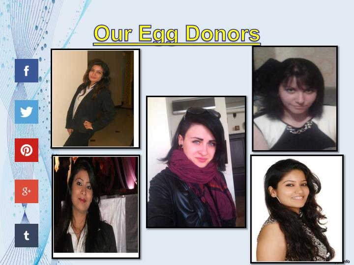 Our Egg Donors