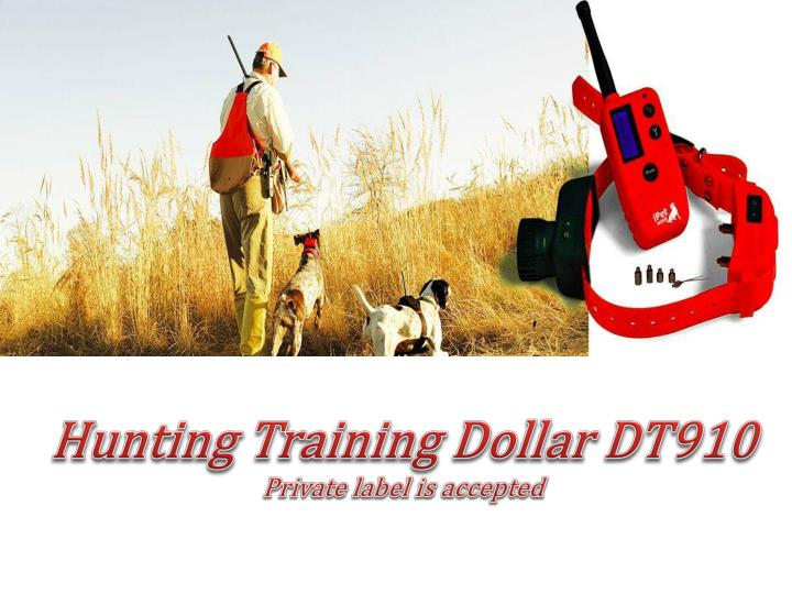 Hunting Training Dollar DT910