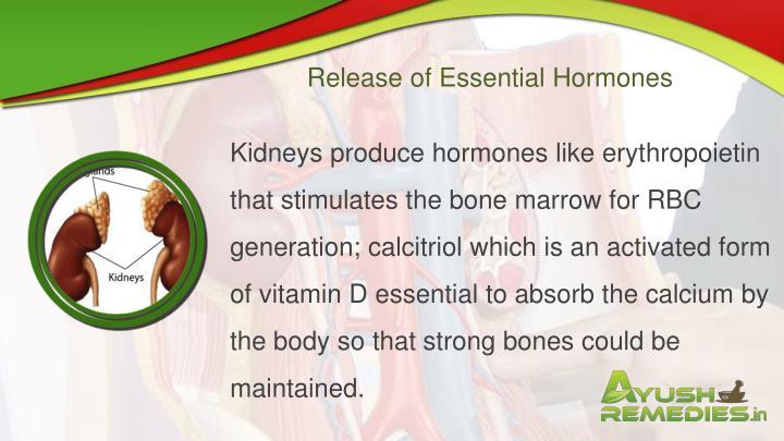 Release of Essential Hormones